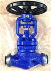 WJ61H波纹管焊接截止阀