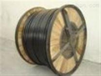 ZR-DJYPVP阻燃計算機電纜.製造商