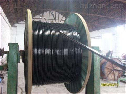 ZRVVRP阻燃儀器儀表電纜