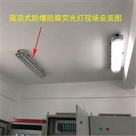 BCX6225-36W粉尘防爆荧光灯(吊杆式)上海