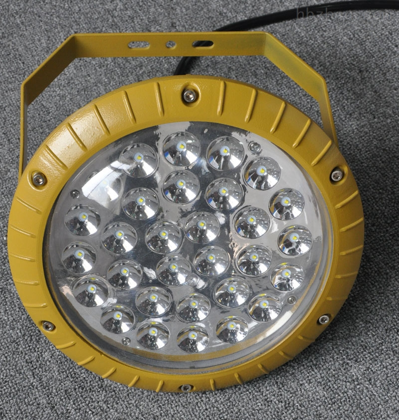 BLED63高效节能防爆灯100w 支架式 壁式