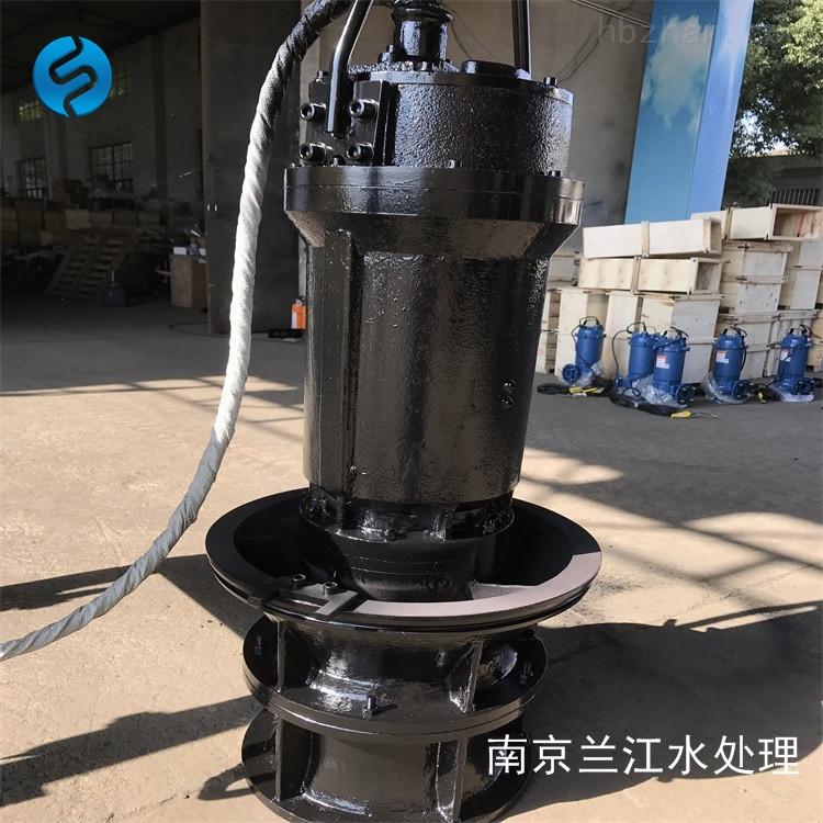 落地式安装潜水轴流泵