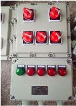 防爆检修电源插座箱(BXX52)