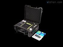 SKY8000-H2氫氣分析儀