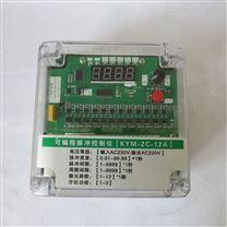 智能脉冲控制仪