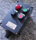 BZC8030-A2D2B2防腐防爆操作柱