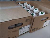 GIBCO血清10091-148(新西兰)500ML