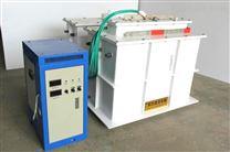 qzy白城市電解法二氧化氯發生器