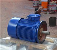 YE3-225M-2(45KW)立式电机