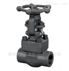 中国凯尔特锻钢承插焊闸阀