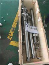 北京SNCR脱硝喷枪,上海湛流厂价直销