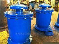 FSP複合式雙口排氣閥