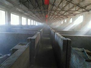 畜牧养殖场自动喷雾消毒降温设备