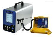 銳意自控_煙氣分析儀Gasboard-3800Plus