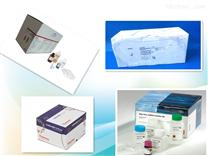 小鼠IGFBP-1 elisa檢測試劑盒 谘詢請點擊