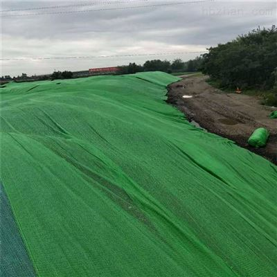 2米-12米2000目盖土网 三针防尘网
