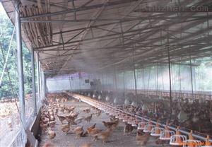 山东鸡舍喷雾降温消毒系统