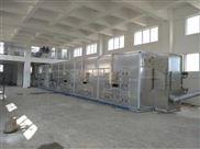 城市污水处理厂污泥处理装置 污泥干化机