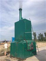 生活垃圾磁化裂解炉 助力美丽乡村建设