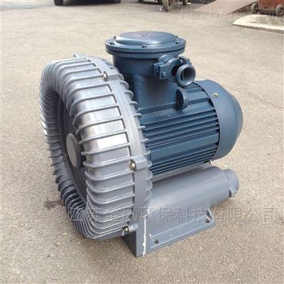 高压防爆漩涡气泵
