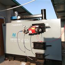 燃煤型种植养殖专用锅炉立式型号价格