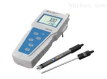 PHBJ-260型便攜式pH計