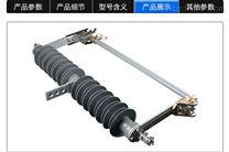 35kv高压防风型熔断器