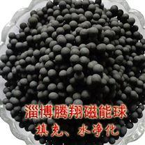 磁能球腾翔磁化水滤料厂家磁石活化水质陶粒