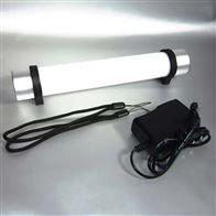ZYG86防爆手持磁力检修灯LED电筒式工作棒