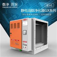 DL-GX系列高效型静电式油烟净化器工业商用过环评无忧