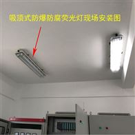 LED2*18W36瓦防爆防腐荧光灯车间吸顶日光灯