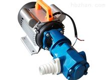 手提式齿轮油泵