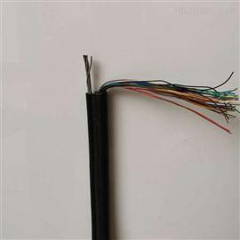 HYAC 100*2*0.5自承式通信电缆