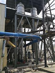 12t/h氯化镁蒸发器