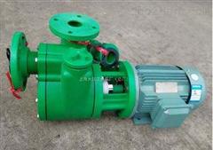 50FPZD-28直联耐腐自吸塑料泵