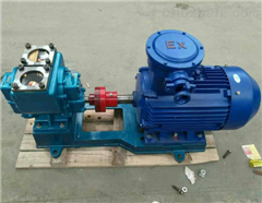 YCB3.3-1.6上海不锈钢圆弧齿轮泵