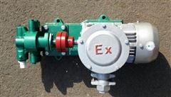 2CY KCB2CY KCB齿轮式输油泵