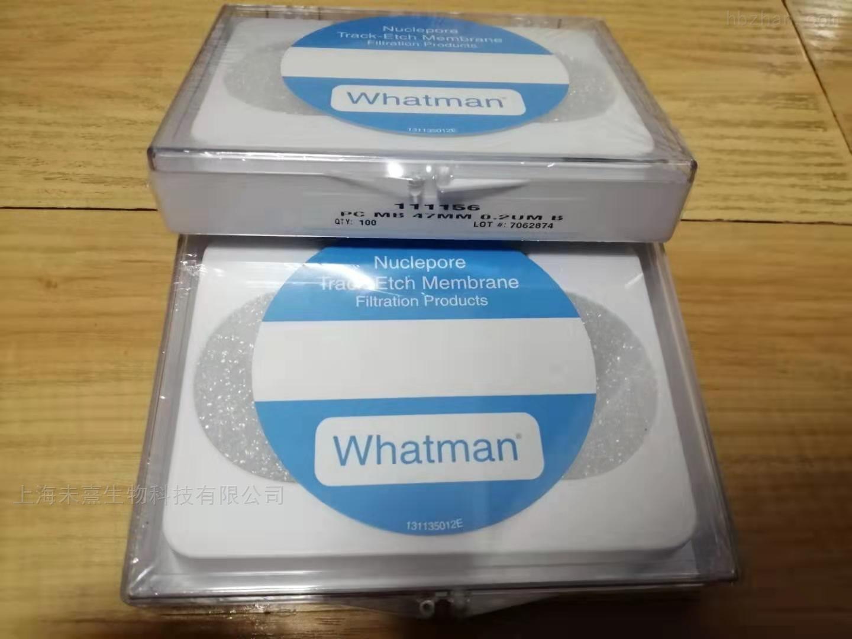 Whatman沃特曼滤膜 径迹蚀刻膜0.2um孔径