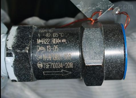 安全阀EB51FZ301G SFA-22C300C1 PK1.3MPA