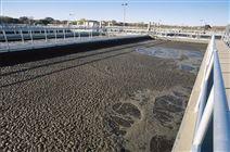 工业污泥处理服务