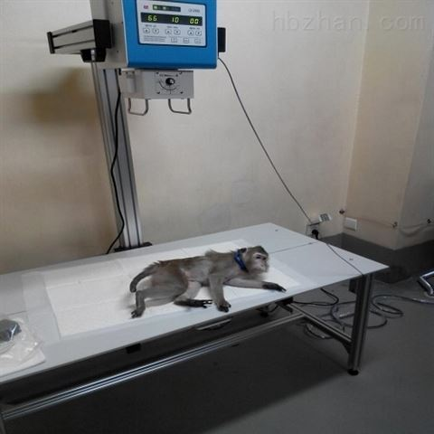 动物用拍片机20A