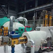 EH油系统油动机入口工作滤芯W.38.Z.000208