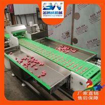 鸡肉串穿串机生产厂家