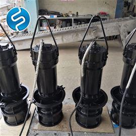 氯化铁潜污泵WQ25-14-2.2
