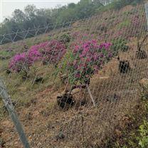 农业种植试验场区围网 农田保护区防护网