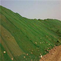 六针加密绿色盖土网送货快