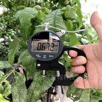 数显高精度植物叶片厚度仪