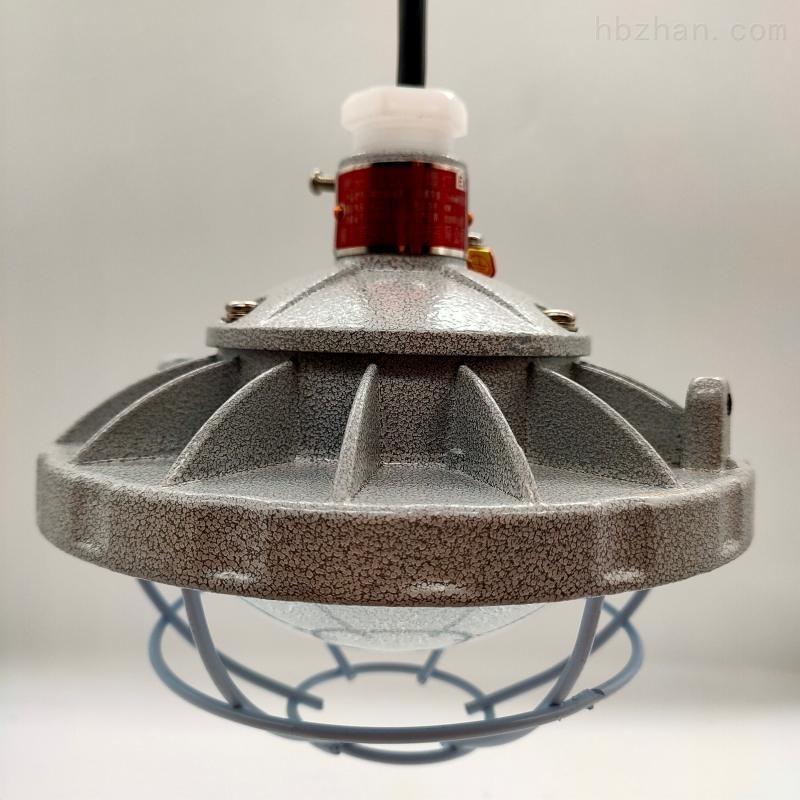 带灯罩免维护防爆照明灯