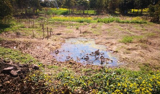 """農村污水治理為什麼還是繞不開""""看著美、做著難"""""""