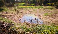 """農村汙水治理為什麼還是繞不開""""看著美、做著難"""""""